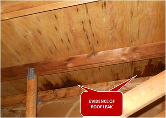 Evidence of Roof Leak resized 600