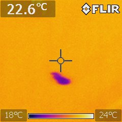 Ceiling Thermal